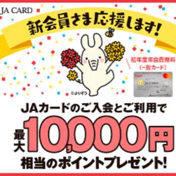 jacard350350.jpg